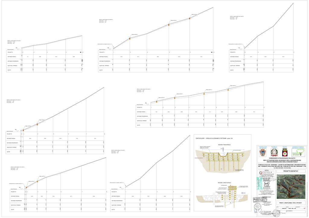 TAV12 PROFILO LONG AFFLUNENTI-page-001
